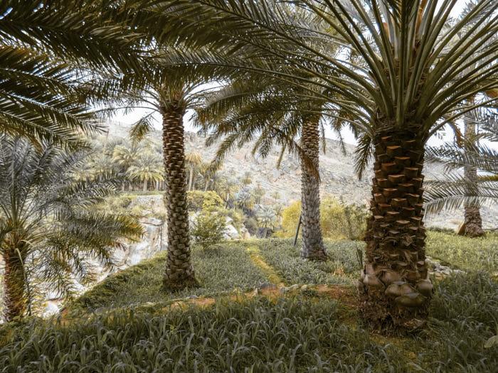 Misfah Al Abryeen Oman Passione Passaporto