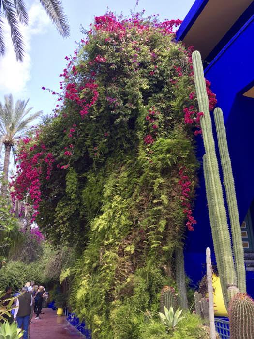 Jardin Majorelle Marrakech Marocco Passione Passaporto