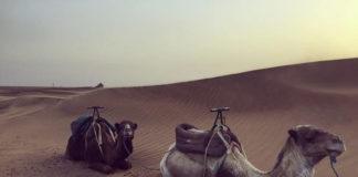 Zagora Sahara Marocco Passione Passaporto