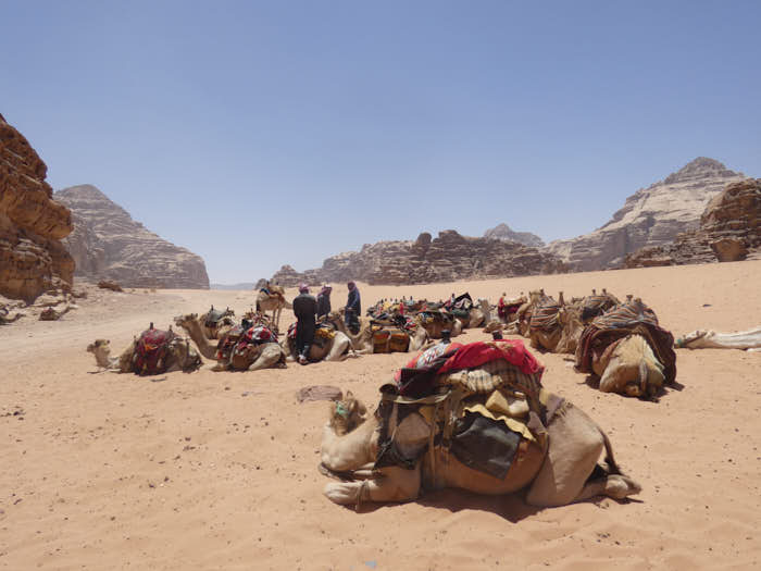Wadi Rum Giordania Passione Passaporto