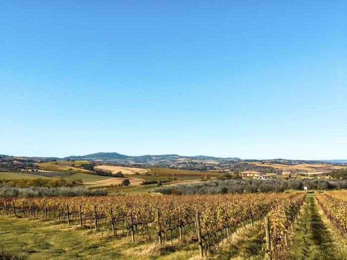 Cosa vedere Toscana Chianti Toscana Italia Passione Passaporto