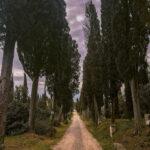 Itinerario Chianti Cosa fare nel Chianti Toscana Italia Passione Passaporto