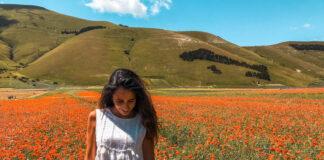 Fioritura Castelluccio di Norcia informazioni utili fioritura della lenticchia Umbria Italia Passione Passaporto